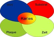 Entstehung von Karies
